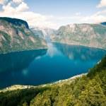 Aurlandsfjorden in Norway, Sognefjord — Stock Photo #14349741