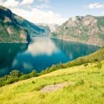 Aurlandsfjorden in Norway, Sognefjord — Stock Photo #14349781