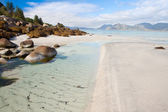 Sandy Coast with stones on the Lofoten Island, Norway — Stock Photo