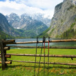 Nordic walking sticks in Alps - Stock Photo