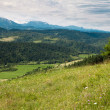 Slovak landscape — Stock Photo