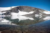 Reflection on Gjuwatnet lake under Galdhoppingen — Stock Photo