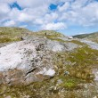 Tundra landscape in Norway — Stock Photo