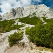 Stock Photo: Eroded rocks near Vrsic Pass, Triglav National Park, Julian