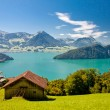 Beautiful view to Lake Lucerne (Vierwaldstattersee ) and mountain Pilatus from Rigi, Swiss Alps — Stock Photo #20996877