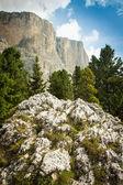 Beautiful Dolomites, South Tyrol, Italy — Stock Photo