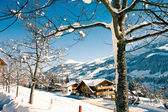 Village in the swiss Alps — Foto Stock
