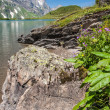 Hiking around Truebsee lake in Swiss Alps, Engelberg, Central Switzerland — Stock Photo