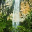 Purlingbrook Falls in Springbrook National Park, Gold Coast, Australia — Stock Photo