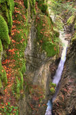 Alpine canyon in the beautiful autumn forest with Kessel Waterfall in Brandnertal valley, Voralberg, Austria, HDR — Stock Photo