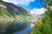 Güzel manzara fiyort ve kuzey norveç dağlarında — Stok fotoğraf