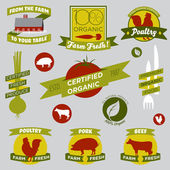 Organic Farming Design Elements — Stock Vector