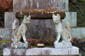 Stone-carved guardian dog in Japan — Stock fotografie