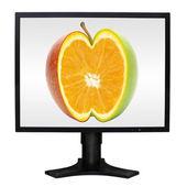 Monitor de la computadora — Foto de Stock