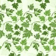 Stock Vector: Seamless pattern with parsley