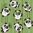 Pandas on the background of bamboo — Stock Vector