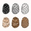 Vector set of pine cones on a white background — Stock Vector