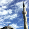 Mosque in istanbul - Stock Photo
