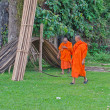 Buddhist monks. Vang Vieng. Laos. — Foto de stock #22181109
