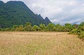 Landscape. Vang Vieng. Laos. — Stock Photo