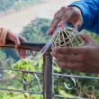 Man Holds Bird Cage. Luang Prabang. Laos. — Stock Photo #23228672