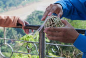 Man Holds Bird Cage. Luang Prabang. Laos. — Stock Photo