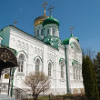 Trinity Cathedral of Raifa male Bogoroditssky Monastery. Tatars — Stock Photo