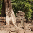 TProhm Temple. Angkor. Cambodia — Stock Photo #31830979