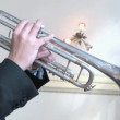 Trumpet player. — Stockvideo