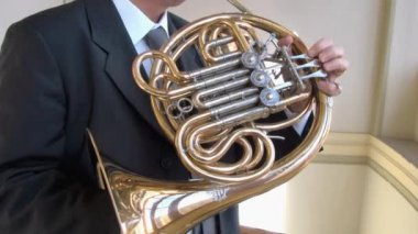 French horn player. — Stock Video