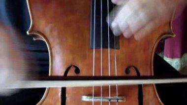 Cello player. — Vídeo de stock