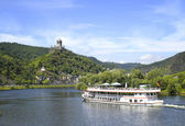 The Rhine river in Briedern, Germany. — Stock Photo
