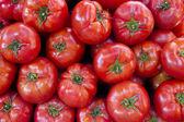 Fresh tomatoes. — Stock Photo