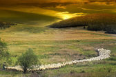 Sunset in the Romanian countryside and flock of sheep. — Stockfoto
