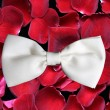 Background with roses and bow tie. — Stock Photo