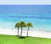 Vero beach, florida, estados unidos da américa. — Foto Stock