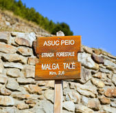 Road signs in the Pejo Valley, Italy — Stock Photo