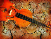 Violin on grunge background. — Stock Photo