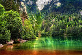 Lake Tovel, Trentino Alto Adige, Italy. — Stock Photo