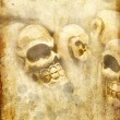 Skulls on grunge background — Stock Photo