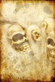 Skulls on grunge background — Stock Photo
