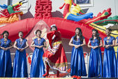 Orlando Florida USA - Chinese New Year February 9, 2014 — Stock Photo