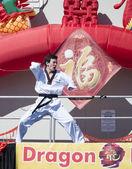 中国の旧正月 2014 年 2 月 9 日、フロリダ州オーランド, 米国中の中国の武道のパフォーマンス — ストック写真