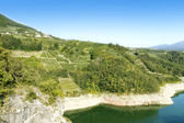 Trentino Italy, apple orchards and Santa Giustina lake — Stock Photo