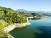 Trentino Italy, apple orchards and Santa Giustina Lake. — Stock Photo