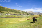 Livigno landscape, Italy — Stock Photo