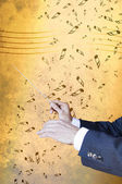 Music conductor hands and baton. — Stock Photo