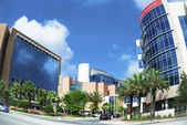 MD Anderson Cancer Center Orlando, Florida — Stock Photo