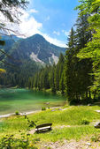 Lake Tovel, South Tyrol, Italy — Stock fotografie