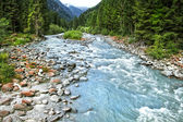 Stream in South Tyrol, Italy — Stok fotoğraf